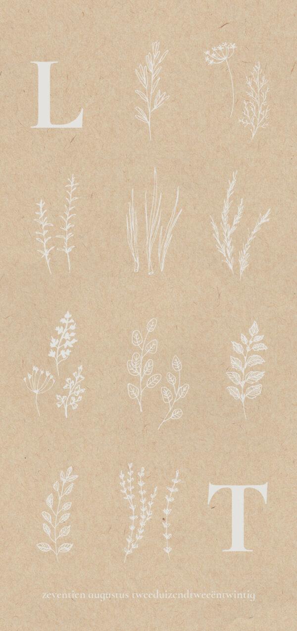 Trouwkaart Botanisch Wit Illustraties Kruiden Botanicals Romantisch