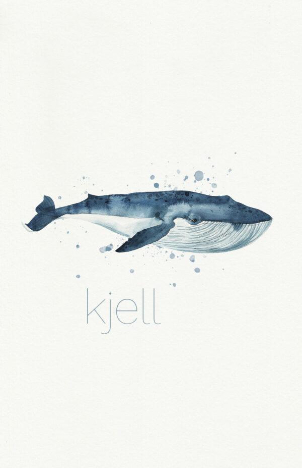 Walvis Waterverf Aquarel Dieren Geboortekaartje